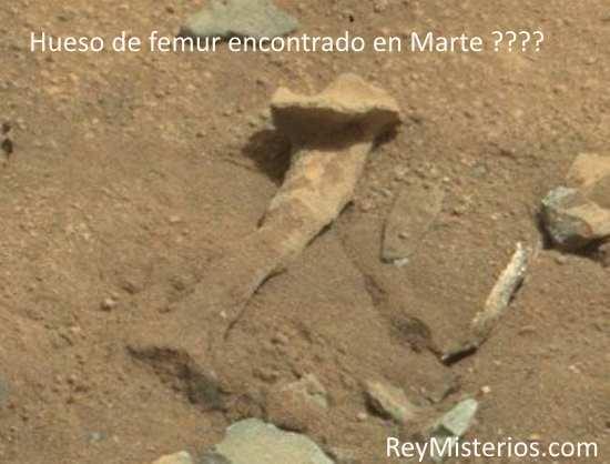 Marte femur