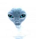 Para famosos paranormales online dating 10